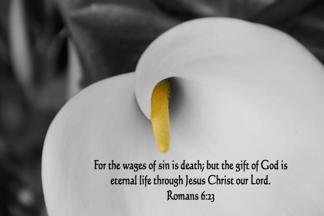 Eternal Life.jpgbw