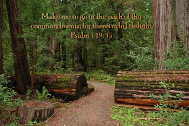 path-of-commandments
