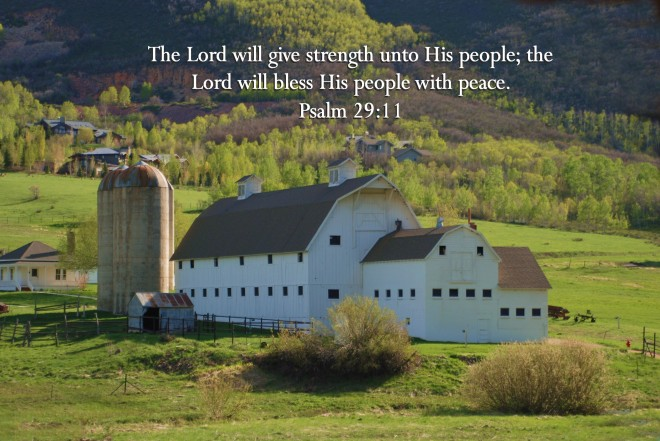 peace-at-the-barn