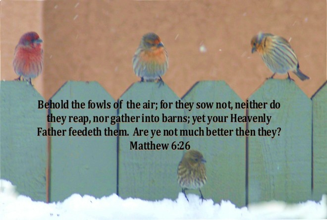 Fowls of the air